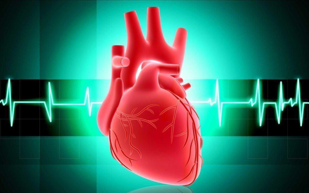 Ini Dia 6 Pola Makan yang Wajib Diterapkan Agar Jantung Selalu Sehat