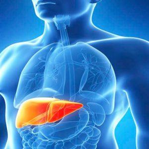 Penting! Mengetahui Penyakit Liver dan Cara Pencegahannya