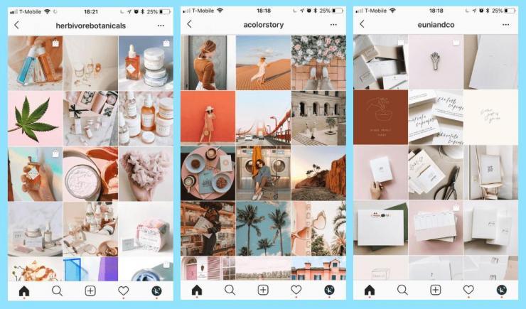 6 Tips Cepat Menjadi Selebgram dengan Auto Follower Instagram